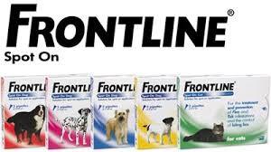 frontline hond