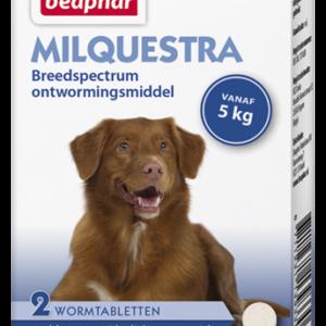 Milquestra wormtabletten hond 2 tabl