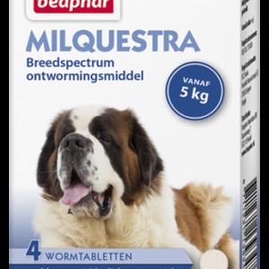 Milquestra wormtabletten hond 4 tabl